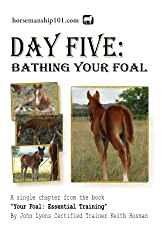 Day Five: Bathing Your Foal (Your Foal: Essential Training Book 5) (English Edition)
