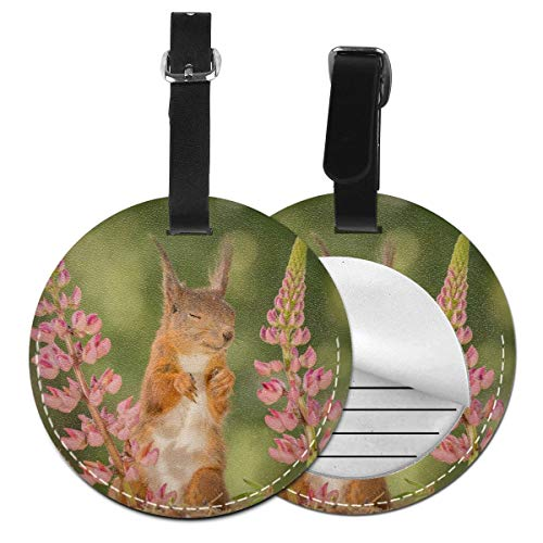 Red Squirrel With Eyes Closed Luggage Tags Leather Case Luggage Bag Backpacks Tags Travel Tags 1 piece