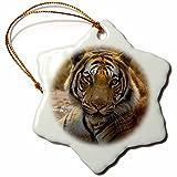 3dRose Danita Delimont - Big Cats - India. Bandhavgarh Tiger Reserve, Bengal tiger resting in water. - 3 inch Snowflake Porcelain Ornament (orn_276806_1)