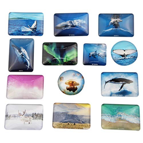 Crystal Glass Fridge Magnets -13 Pieces Funny Refrigerator Magnets,Perfect Decorative Magnets for Whiteboard,Office and Kitchen -Funny Magnet Gift Set,Original Design(Landscape Series)