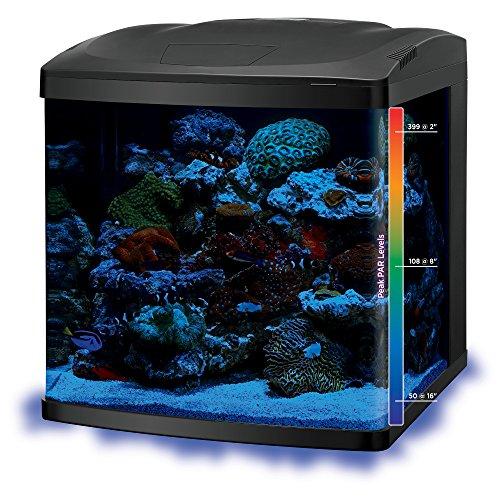 Coralife biocube size 29 reviews compare deals pet for Fish tank deals