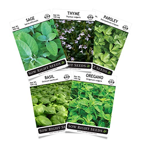 Hardware Italian - Sow Right Seeds - Italian Herb Garden Seed Collection - Basil, Oregano, Parsley, Sage, and Thyme; All Non GMO Heirloom Seeds with Full Instructions for Planting an Easy to Grow Kitchen Garden, Indoor
