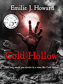 Cold Hollow (Cold Hollow Mysteries Book 1) by [Howard, Emilie J.]