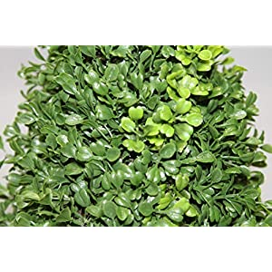 Admired by Nature Aritificial Boxwood 5