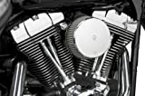 Arlen Ness 50-334 Big Sucker Stage I Air Filter Kit with Cover
