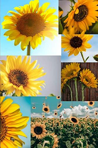 Sunflowers: A 6x9 Lined Notebook Journal