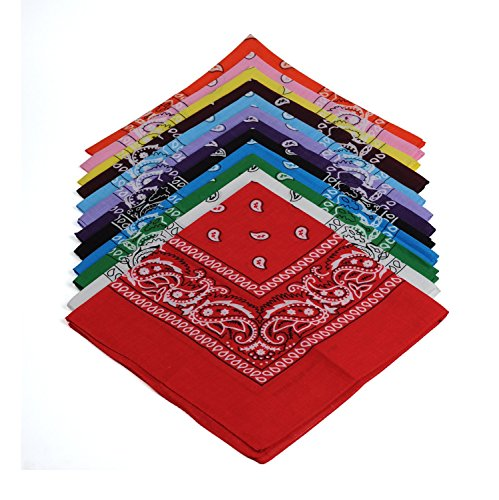 BSLINO One Dozen/12pcs Assorted Bandanas 22X22 Inch 100% Cotton Novelty Double Sided Print Paisley Cowboy Bandana Party Favor Scarf Headband Handkerchiefs by BSLINO (Image #3)