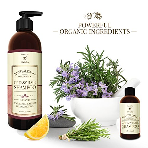 Shampoo For Oily Greasy Hair SLS And Sulfate Free With Organic Rosemary Lemon And Tea Tree Oil Helps Decrease Oily Secretions Balance PH Level And Leaves Hair Shinier 16 Fluid Ounces
