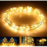LED String Lights, AllBlue™ Fairy String Lights, Waterproof 39ft 120 LEDs Copper Wire Starry String Lights Indoor Outdoor for Christmas Bedroom Home Party Decorative Lighting with 12V DC Power Adapter - Warm White
