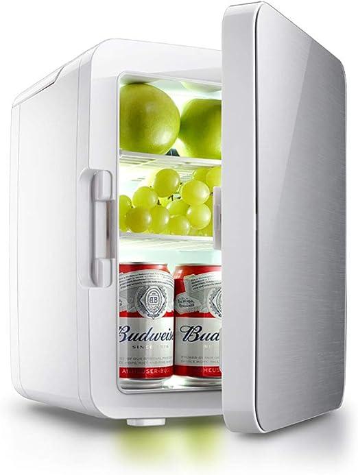 FJW Refrigerador del Coche 10L Mini refrigerador Doble Voltaje Enfriar y Calentar la Caja fría eléctrica, 12V DC / 220-240V AC para Coche/Casa/Viajes/Camping,Silver: Amazon.es: Hogar