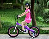 Royalbaby Honey Kids Bicycle 12 Inch, 14 Inch, 16 Inch, Girls Bike Boys Bike, Gift for Girl, Girls Bicycles