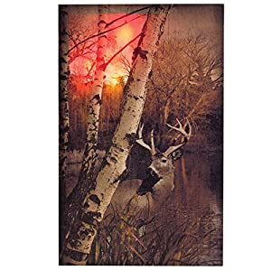 Ohio Wholesale Days End Canvas Radiance Lighted Wall Art