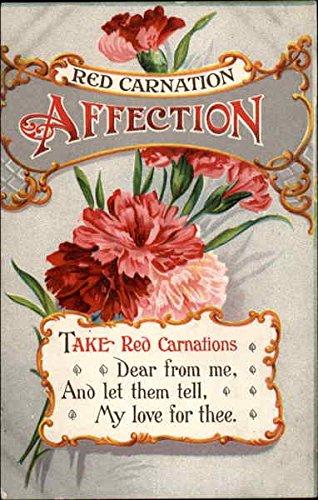 red-carnation-affection-flowers-original-vintage-postcard
