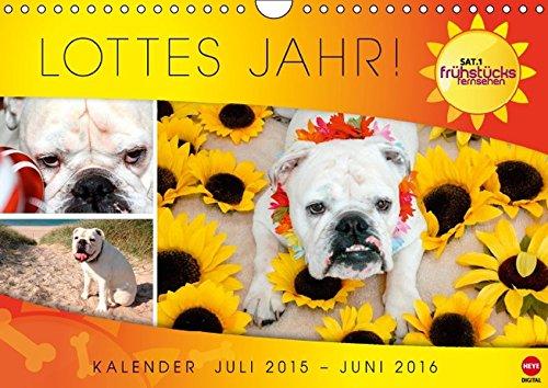 Lottes Jahr (Wandkalender 2016 DIN A4 quer): Ein Jahr mit Lotte aus dem SAT.1 Frühstücksfernsehen (Monatskalender, 14 Seiten) (CALVENDO Tiere)