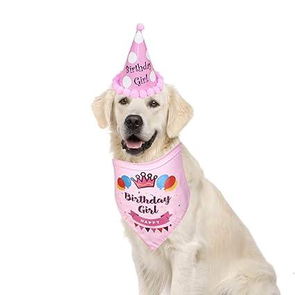 Cuteboom - Bandana de cumpleaños para Perro con Gorro de ...