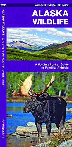 Alaska Wildlife: A Folding Pocket Guide to Familiar Animals (Wildlife and Nature -