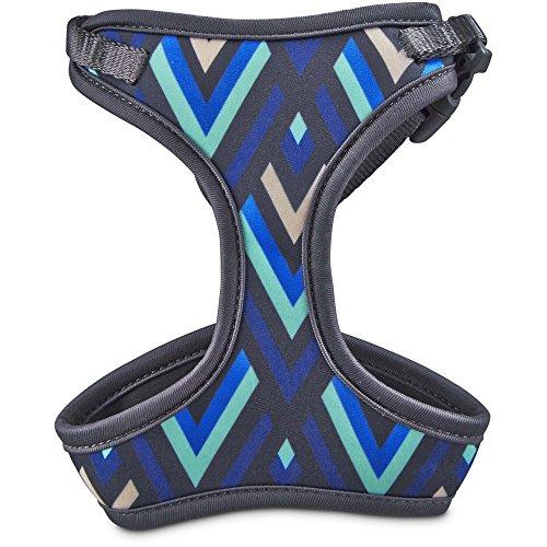 (Good2Go Aqua and Blue Chevron Cat Harness and Leash Set, One Size Fits All)