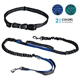 Tabpole Hands Free Waist Dog Leash, with Dual Bungees, For Medium and Large Dogs Up to 150 lbs, Durable Dual-Handle Bungee Leash with Adjustable Waist - for Running, Jogging, Walking, Hiking, Biking