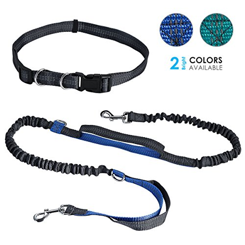 Tabpole Hands Free Waist Dog Leash, with Dual Bungees, For Medium and Large Dogs Up to 150 lbs, Durable Dual-Handle Bungee Leash with Adjustable Waist - for Running, Jogging, Walking, Hiking, Biking by Tabpole
