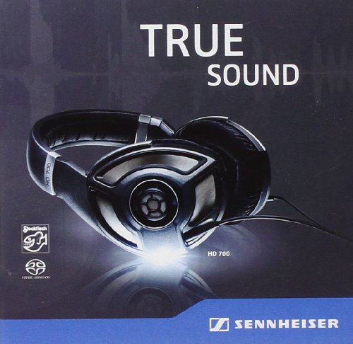 Price comparison product image Sennheiser Hd 700-True So