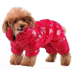 Amazon.com : PET ARTIST Winter Puppy Dog Coats for Small