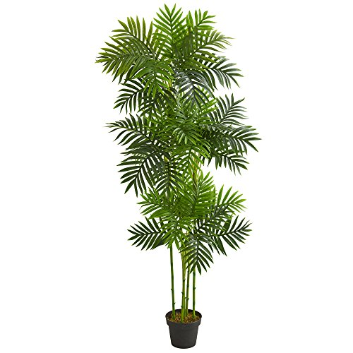 - Nearly Natural 5537 6' Phoenix Palm Tree Artificial Plant, Green
