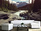 wallpaper canada - wall26 - Scenic views of the Athabasca River, Jasper National Park, Alberta, Canada - Removable Wall Mural | Self-adhesive Large Wallpaper - 100x144 inches