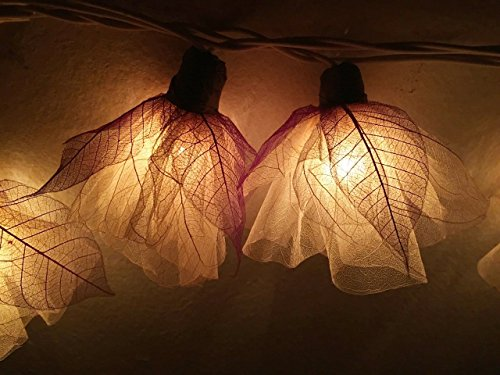 Magical Garden Handmade 20 Romantic Natural Bodhi Leaf Flower Fairy String Lights Patio Wedding Party Vanity Kid Wall Lamp Floral Home Decor 3m (Carnation, White) - 16' Low Bay Light