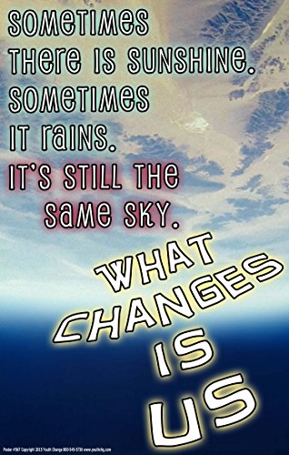 Youth Change Workshops Inspirational Counseling Guidance Poster Helps Students Cope #567
