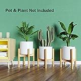 Plant Stand Flower Pot Holder - BAMFOX Indoor