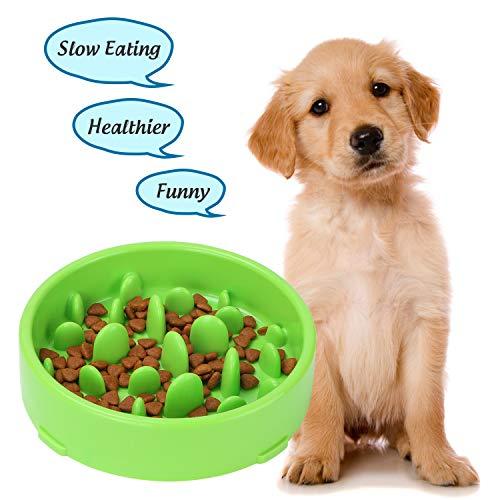 XZQTIVE Dog Feeder Slow Eating Bowl Anti-Choking Design Bowl for Dog, Fun Feeder Bowl