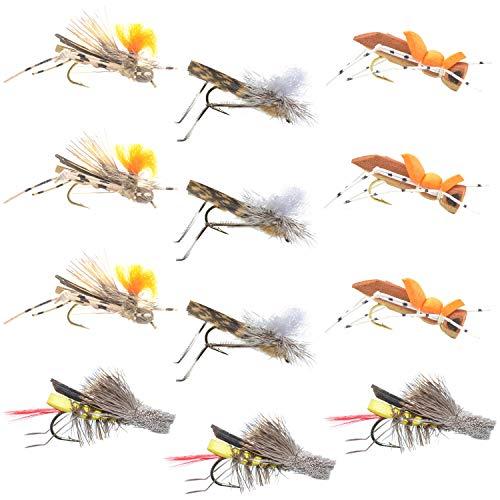Trout Fly Assortment - Four Best Grasshopper Trout Dry Fly Fishing Flies Collection - 1 Dozen Flies - 4 Hopper Fly Patterns (Best Beetle Fly Patterns)