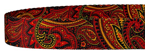Image of Country Brook Design | 5/8 Inch Fire Paisley Dog Leash - 6 Foot