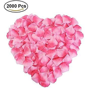 Amazon silk fabric flower mini rose petals for weddings 1000 silk rose petals flower red for wedding proposal decorations 2000pcs by newstarfire pink mightylinksfo