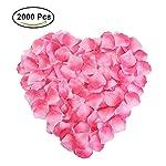NewStarFire-Silk-Rose-Petals-Flower-Red-for-Wedding-Proposal-Decorations-2000PCS