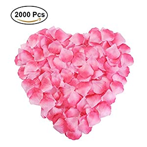 NewStarFire Silk Rose Petals Flower Red for Wedding Proposal Decorations 2000PCS 19