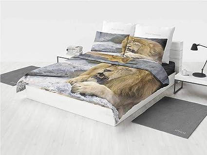 Amazon.com: Safari Decor Men Bedding Sets Big Lion with Little Cub ...