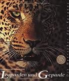 Leoparden und Geparde: Die Herrscher der Savanne