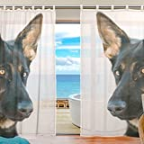 "La Random Brown German Shepherd Dog Window Sheer Voile Curtains for Living Room Bedroom Kids Room Curtains Polyester 55""Wx78""L Per Panel Set of 2 Panels"