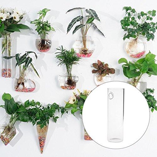 Flower Wall Fan (StarShine Flower Planters Wall Hanging Glass Vases Plant Pots Terrarium for Home Garden Decor)