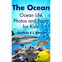 The Ocean: Ocean Life, Photos and Facts for Kids
