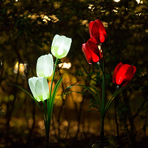 Solar Tulip Garden Lights in US - 2