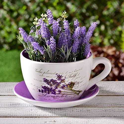 Giant Teacup Planter Giant Tea Cup Planter </div>