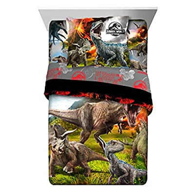 TN 2 Piece Kids Orange Black Jurassic World Comforter Twin/Full Set, Dinosaur Themed Bedding T-Rex Raptors Pattern Reptiles Dino Movie, Reversible Polyester: Kitchen & Dining