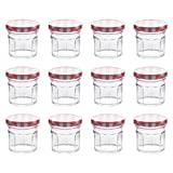 Klean Shop Jam Jars With Lids – Red Lid Jam Jar Set – Fruit Mason Jar – Glass Jam Canning Jars – DIY 2oz (80ml), 12 Pack Jars- Perfect for Jam Storing, Pickles and Many Other