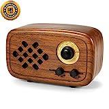 Rerii Handmade Walnut Wood Portable Bluetooth Speaker, Bluetooth 4.0 Wireless Speakers with Radio