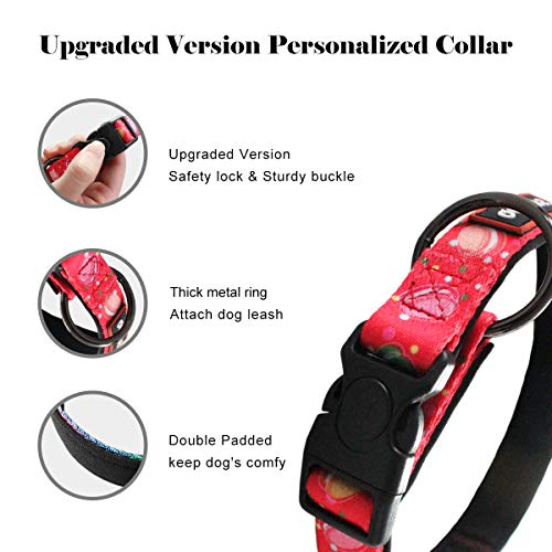 QQPETS Dog Collar Leash Set Adjustable Personalized Basic Collars for Large Training Walking
