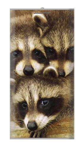 S0977 Baby Raccoons Universal INNOVE 12000 mAh Portable - Raccoon Usb