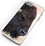 iPhone 5c Case Bison Buffalo American Head Animal Mammal White Rubber