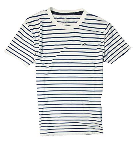 Hollister Men's Tee Graphic T-Shirt V Neck - Crew Neck (White Stripe 0419, L)